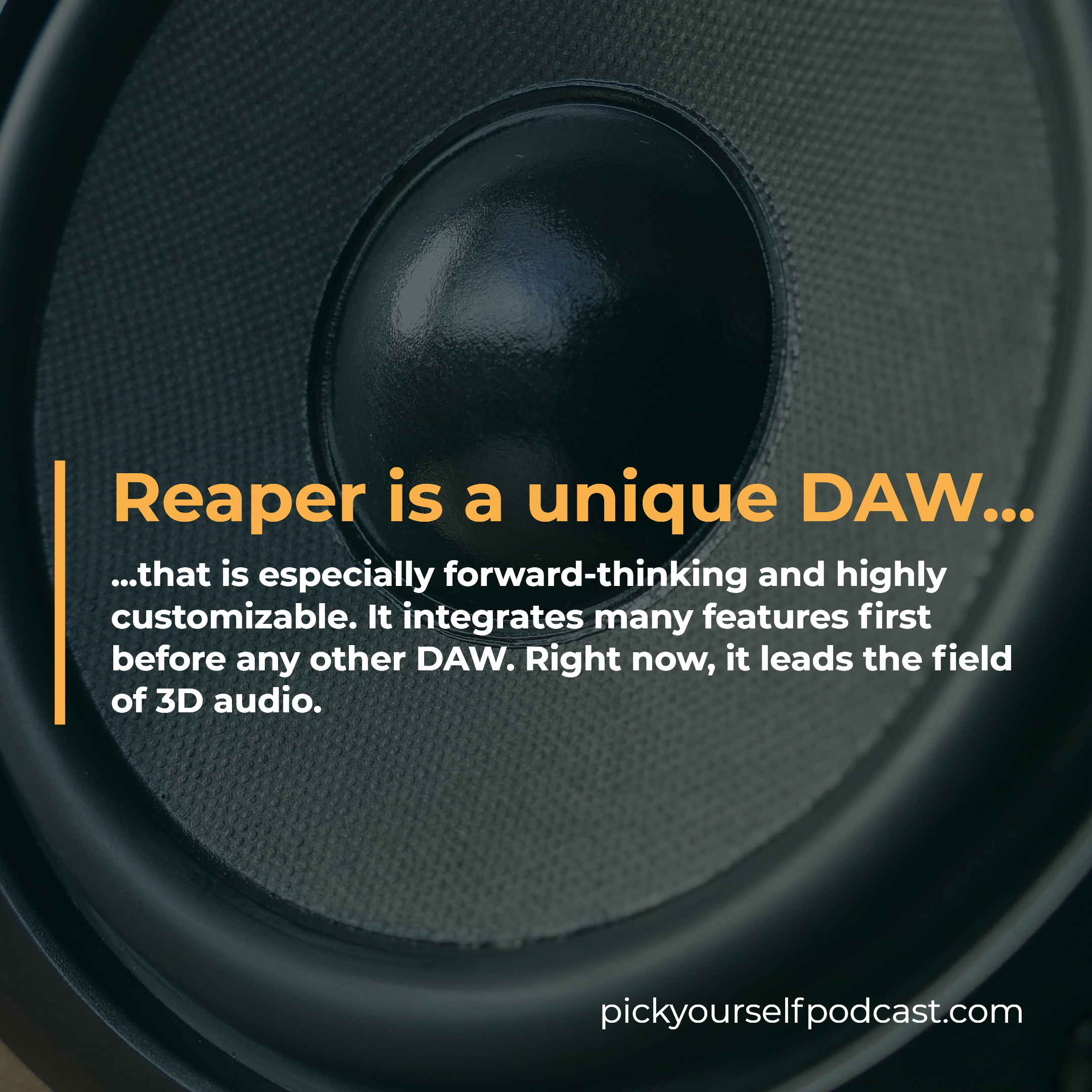 Reaper is a unique DAW that is especially customizable and forward-thinking.