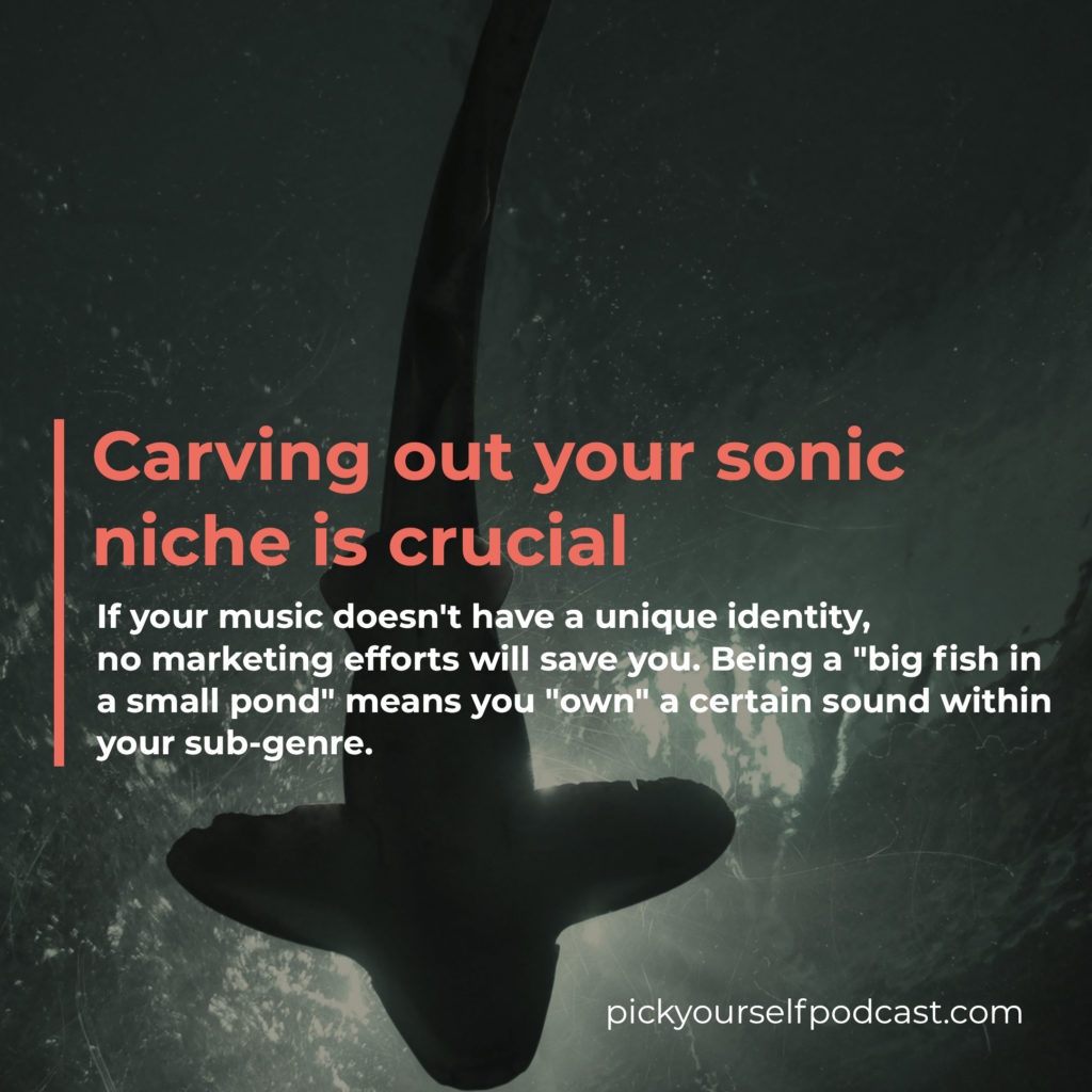 Carving out your sonic niche is one of the best music marketing strategies.